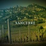 サンセール ワインとは?ブドウ品種と味わいの特徴