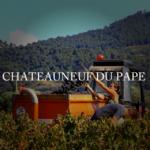 シャトーヌフデュパプ ワインとは?特徴とブドウ品種、合わせる料理