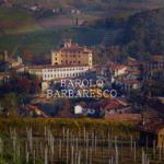 バローロ、バルバレスコとは?違いとブドウ品種、合わせる料理