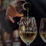 ガヴィ ワインとは?特徴とブドウ品種、合わせる料理