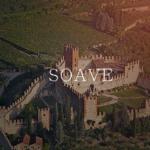 ソアーヴェ クラシコ ワインとは?特徴とブドウ品種、合わせる料理