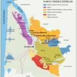メドックとは?ボルドーワインの特徴とブドウ品種、歴史