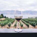 ポムロール ワインとは?特徴と歴史、ブドウ品種