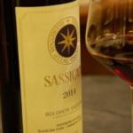 サッシカイア ワインとは?特徴とブドウ品種、合わせる料理