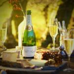 ワインの飲み方|最初の一歩を間違えないためのガイド