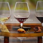 ワインのテイスティングのやり方|コツをつかむ具体的手法